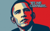 The US incapacity to enforce federal drug laws - and the global consequences