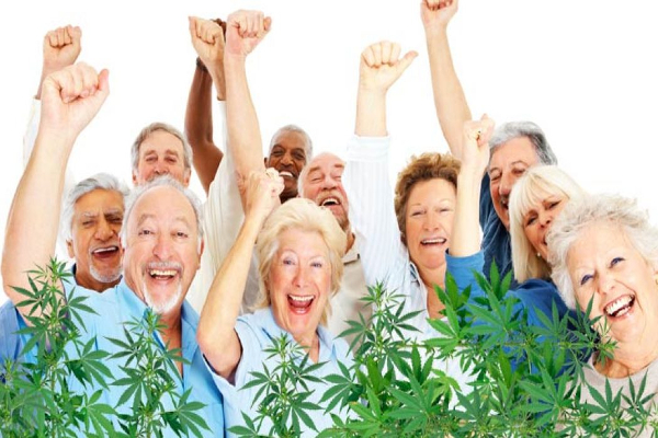 cannabis seniors