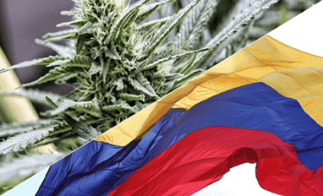 colombia flag cannabis