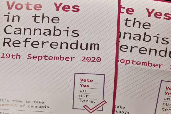 nz vote yes