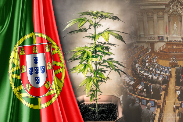 portugal cannabis parliament