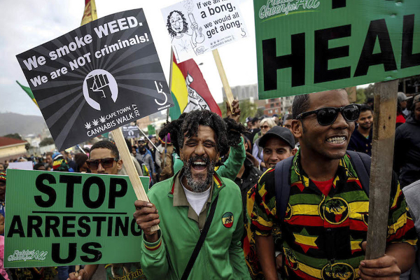sa cannabis demo