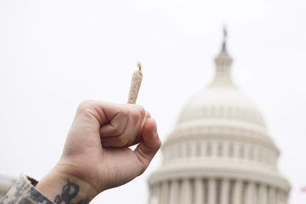 us capitol cannabis