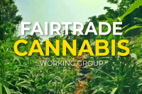 Position Paper of the Fair Trade Cannabis Working Group in the Caribbean